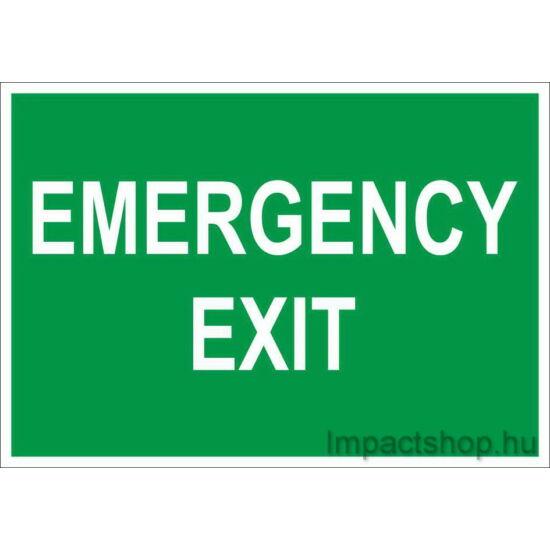 Emergency exit (250x160 mm matrica)