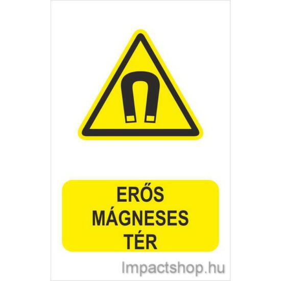 Erős mágneses tér (160x250 mm matrica)